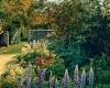 snoeien tuin